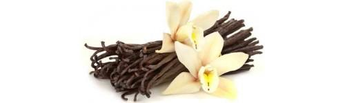 Vanilkové lusky