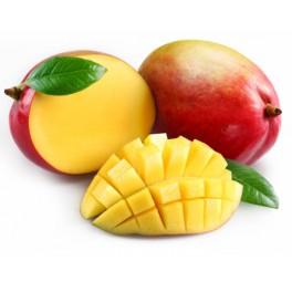 Ochucovací pasta Joypaste Mango 200 g